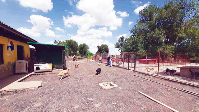 Средствима из донације избетонирано двориште прихватилишта за животиње