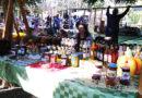 Goranski park – pravo mesto za festival hrane ali i za druge manifestacije