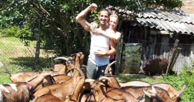 """Gazdinstvo """"Modrin"""": Porodični mir na farmi"""