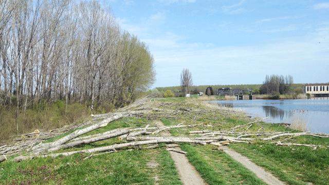 Сеча шуме код канала