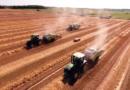 Пољопривреда: Расту цене откупа пољопривредних производа