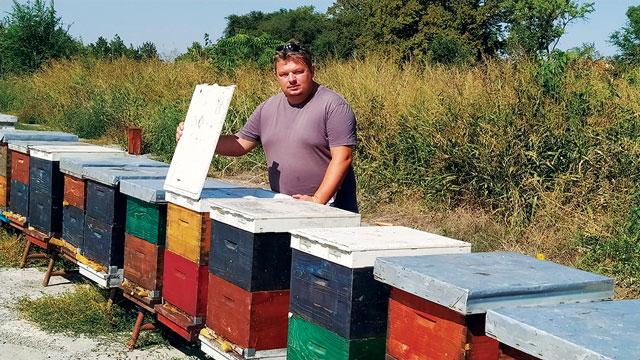 Климатске промене лоше за пчеларе